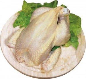 Sárga csirka